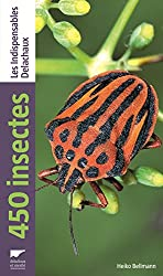 450 insectes