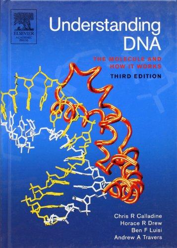 Understanding DNA: The Molecule and How it Works por Chris R. Calladine
