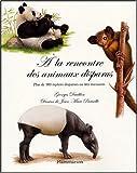 Image de A la rencontre des animaux disparus : Plus de 100 espèces disparues ou très menacées