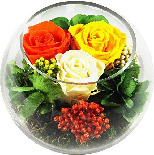 rosen-te-amo-blumen-gesteck-aus-drei-konservierte-blumen-enthalt-drei-echte-premium-haltbare-rosen-i