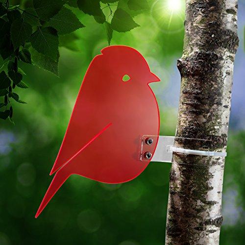sonnenfanger-meise-aus-transparentem-plexiglas-rot-fluoreszierend-leuchtende-kanten-auch-in-den-aben