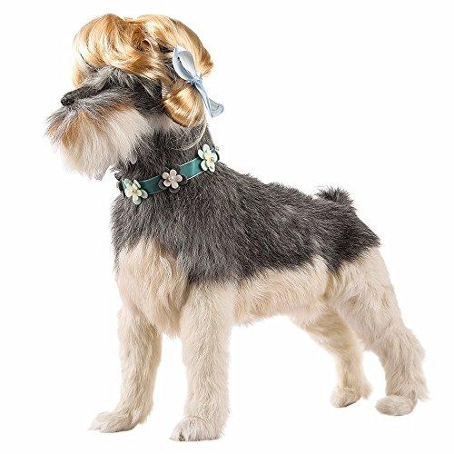 (Amphia - Haustier-Hundekatze-moderner Haustier-Fleischklöschen-ähnlicher Frisur-Perücken-Hut - Einstellbar: 20-60cm)