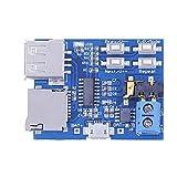 hrph Mini Rat Modul Decoder Format MP3-Player Festplatte u Karte TF mit Verstärker Audio