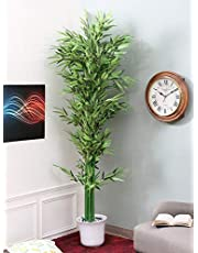 Fourwalls Artificial Real Touch Bamboo Plant Without Pot