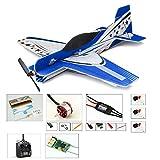 DW Hobby 3D Aerobatic Flugzeug