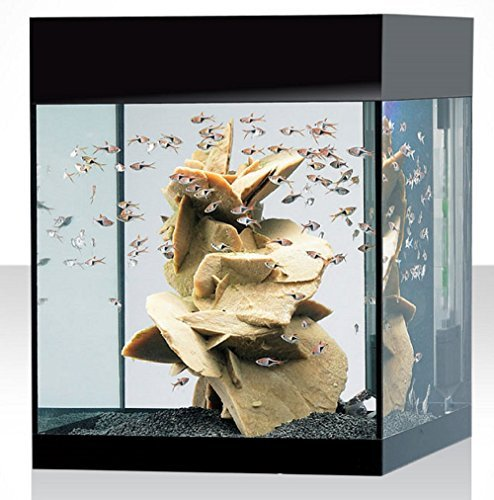 Askoll acquario KIT M ABSOLUTE BLACK