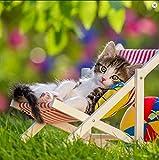 La Kelnet Panno in microfibra – Gatti – Gatto in sedia a dondolo – adatto per tutte le superfici ottiche (18,5 x 18,5 cm) – Lavabile