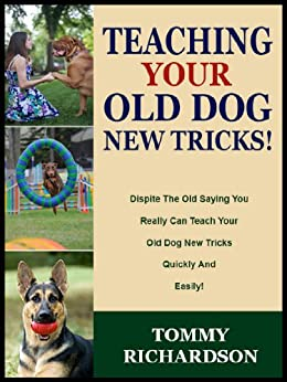 Teaching your old dog new tricks dispite the old saying you teaching your old dog new tricks dispite the old saying you really can teach fandeluxe Epub