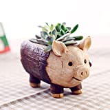 Resin Succulent Flower Pot Kawaii Pinsjar Cartoon Elephant Pig Stake Micro Landscape Garden Home Decoration Planter