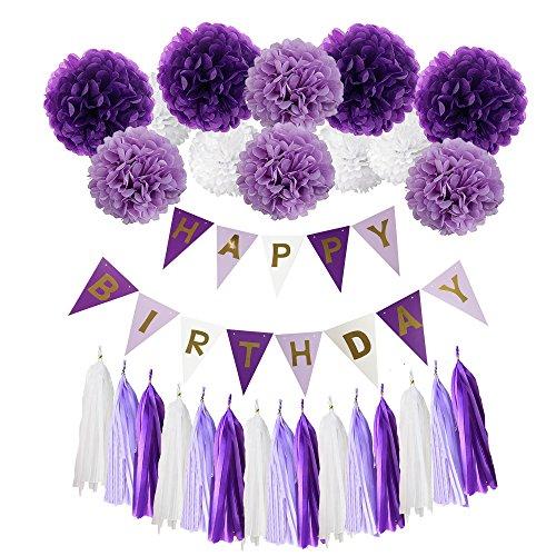 Deco Joyeux Anniversaire Kit, Wartoon HAPPY BIRTHDAY Bannière Banderole Joyeux Anniversaire + 12 Paquets Pompon Papier de Soie Boules de Fleur + 15 Paquets Tassel Pompons