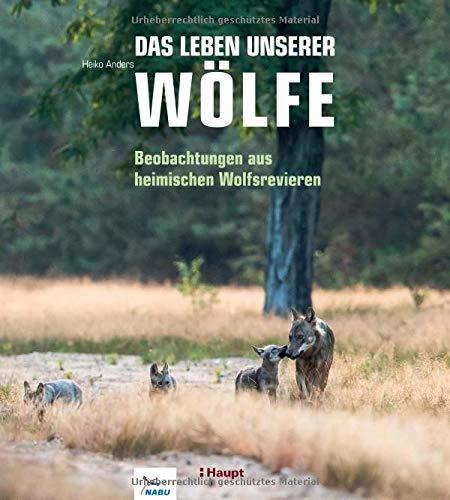 Das Leben unserer Wölfe: Beobachtungen aus heimischen Wolfsrevieren