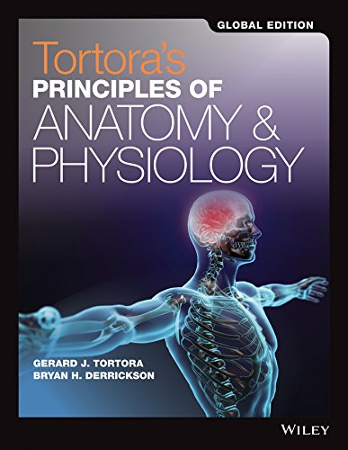 Principles of Anatomy and Physiology Set Global Edition por Gerard J. Tortora