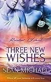 Three New Wishes: (A Gay Romance Novel) (Rainbow Island Book 3) (English Edition)