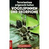 Skorpione und Vogelspinnen