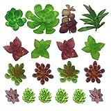 PietyDeko Piante Grasse Finte Decorative, 18 Pezzi Piante Grasse Artificiali Piccole Cactus Fiore Artificiale Succulente