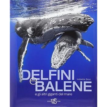 Delfini E Balene E Gli Atri Giganti Del Mare. Ediz. Illustrata