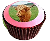 Highland Cattle #edible cake toppers (12 of 38mm 1.5inch) #130