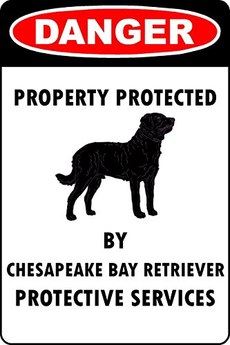 Chesapeake Metall (Larry Sageasd Chesapeake Bay Retriever Lover Parking Only Vintage Metall für Bar Garage Cafe Home 30,5 x 20,3 cm)