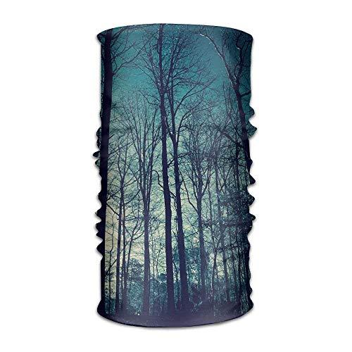 Preisvergleich Produktbild Miedhki Blue Sky High Trees Headwear Bandanas Seamless Headscarf Outdoor Sport Headdress Running Riding Skiing Hiking Headbands Multicolor3