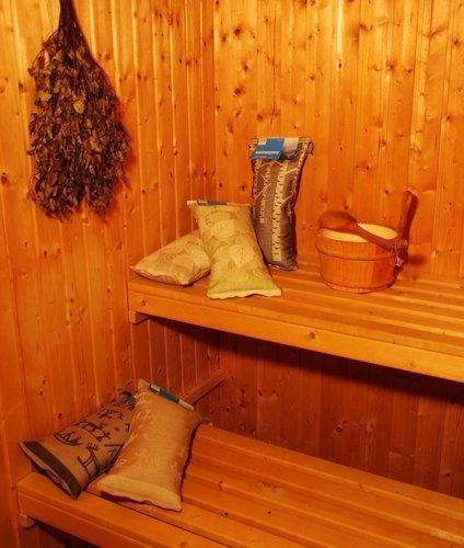 Saunakissen Motiv Lappland dunkel - 3