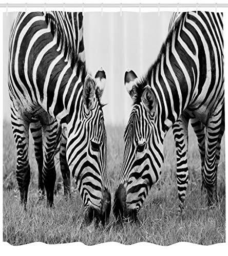 ABAKUHAUS Animal Cortina de Baño, Cebras Vida Salvaje Africana Tema Safari Parque Nacional Imagen Monocromática, Tela Sintética Estampa Digital Colores Vibrantes Set 12 Ganchos, 175 X 200 cm, Blanco