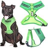 freundlich (bekannt als TO ALL) grün Farbcodierung Non-Pull vorne und hinten D-Ring gepolstert Wasserfest Weste Hundegeschirr verhindert, dass Unfälle von Warnung andere ihrer Hund beim