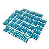 ToCi Kühlmatte, Großes Gel-Kühlkissen 30 Kühlzellen, Flexibles Eispack 38 x 25 cm, Kühlkompresse Kühlakkus, 2 Stück