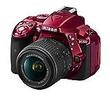 Nikon D5300Digitalkamera DSLR, 24.1Megapixel, SD 8GB 200x Premium Lexar [Nital Card: 4Jahre Garantie]