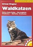 Waldkatzen