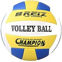 Balones - Voleibol: Deportes y aire libre: Balones de ... - Amazon.es