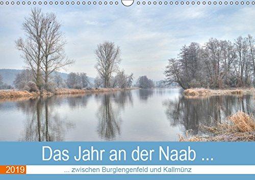 Das Jahr an der Naab zwischen Burglengenfeld und Kallmünz (Wandkalender 2019 DIN A3 quer): Die Naab von Januar bis Dezember (Monatskalender, 14 Seiten ) (CALVENDO Orte)