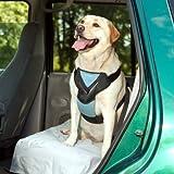 Bergan Complete Dog Car Harness System, Large, Blue