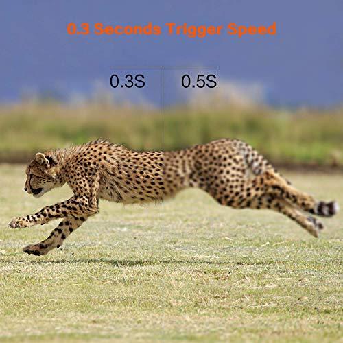 Zoom IMG-2 agm telecamera da caccia fotocamera