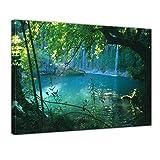 Bilderdepot24 Kunstdruck - Kursunlu Wasserfälle - Türkei - Bild auf Leinwand - 80 x 60 cm - Leinwandbilder - Bilder als Leinwanddruck - Wandbild Landschaften - Natur - Dschungel - Wasserfall im Wald