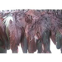 Marrón Oscuro coque fleco plumas 1 metro