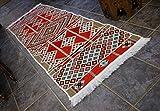 Elessar 65 x 200 cm incl. Fransen, Kelim, Teppich aus dem Orient, Läufer, orientalische Zimmer-Dekoration, Wohnung RS 1-3-22