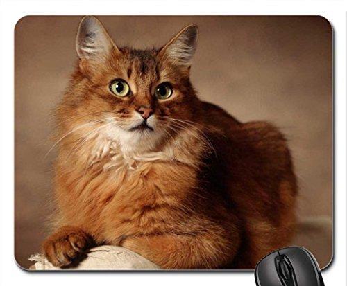 SO REGAL Mouse Pad, Mousepad (Cats Mouse