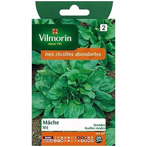 Vilmorin - Sachet graines Mâche Vit