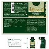 Vegavero Cordyceps Sinensis Mushroom Extract | 500mg Per Capsule | 10:1 Extract (5000mg/5g Powder | Equivalent | 100 Natural Capsules | 100% Vegan