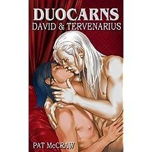 Duocarns - David & Tervenarius (Duocarns Fantasy-Serie (eigenständiges Buch))