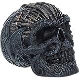 Nemesis Now Cráneo Decorativo Espadas 18.5cm (Negro/Plateado)