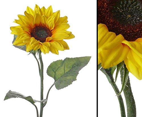 Sonnenblume künstlich mit 3 Blätter, 81cm – Kunstpflanze Kunstbaum künstliche Bäume Kunstbäume Gummibaum Kunstoffpflanzen Dekopflanzen Textilpflanzen Textilbäume Pflanzen aus