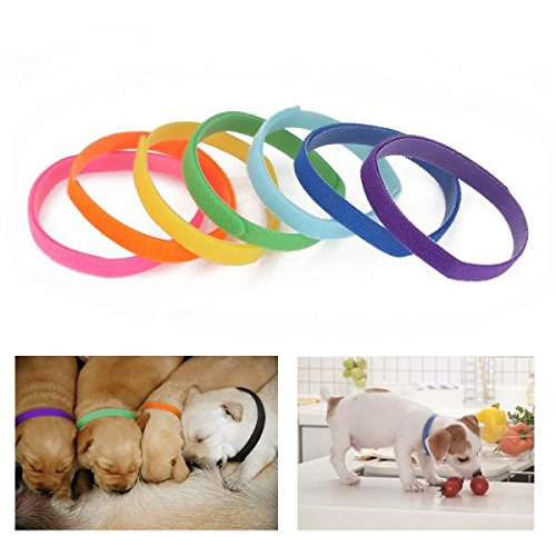 Zogin-12pcs-Whelping-Collars-Newborn-Puppy-Kitten-ID-Nylon-Collar-Bands-Standard-Size-Adjustable-and-Washable-Pack-of-12pcs-for-Breeders