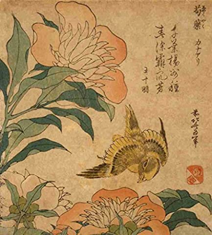 A4 Photo Katsushika Hokusai 1760 1849 Peony and canary 1833 or 1834 Print Poster
