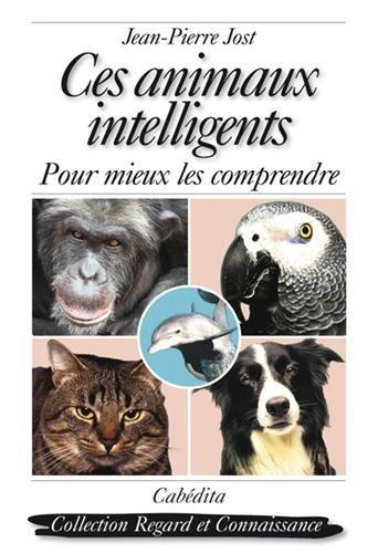 Ces animaux intelligents