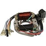 Flying Colourz 50cc 110cc 125cc 2 bobine ATV Quad stator plaque magnéto de bobine d'allumage chinois