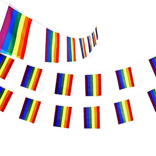 Pizies 18Füße Gestreift Girlande Regenbogenfarben, Gay Pride Bunt Geburtstag Party Dekoration Banner (Enthalten 20Kleine Flagge)