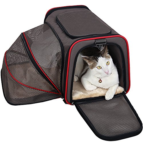 petsfit-expandable-travel-top-zip-open-dog-carrier-strong-wire-frame-fabric-cat-carrier-portable-sof