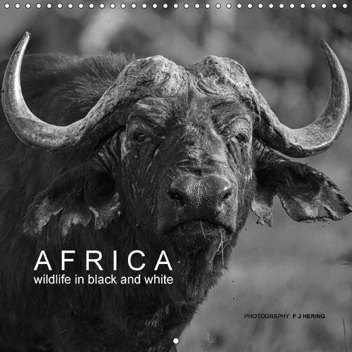 africa-wildlife-in-black-and-white-2017-black-and-white-photography-of-african-animals