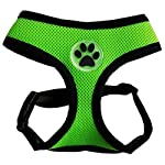 PUPTECK Soft Mesh Adjustable Pet Walking Harness for Dogs Green Extra Large 2
